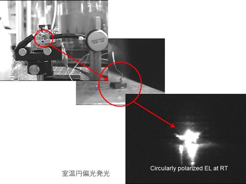 research_munekata_02.jpg